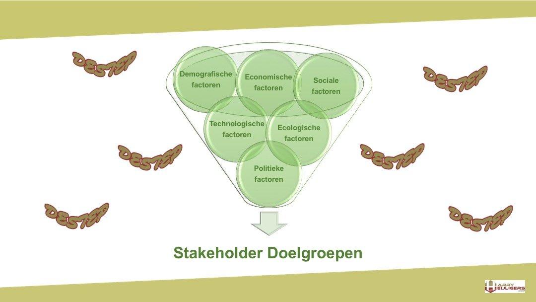 DESTEP analyse model stakeholder doelgroepen